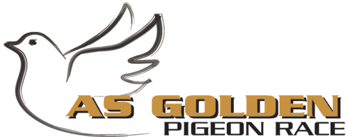 AS Golden Pigeon Logo.